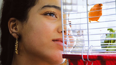 Hafsia Herzi, em La graine et le mulet