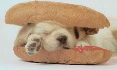 Un hotdog