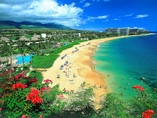 Exotic Hawaiian Beaches
