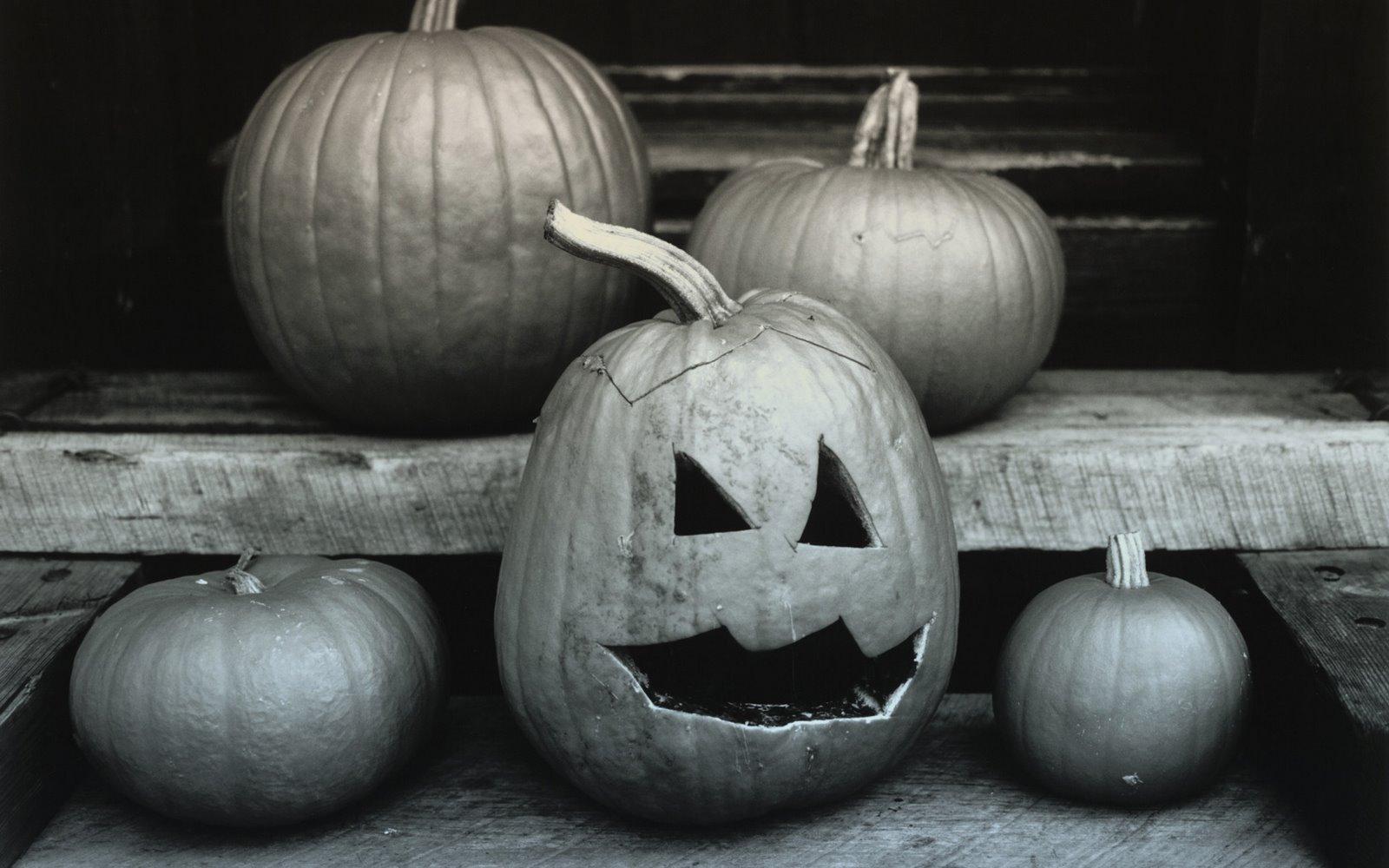 http://1.bp.blogspot.com/_W1ueYt1O3xs/TMv7fdgEjLI/AAAAAAAAW_0/PNoCI9zen9M/d/Halloween+Wallpapers+1920x1200-5.jpg
