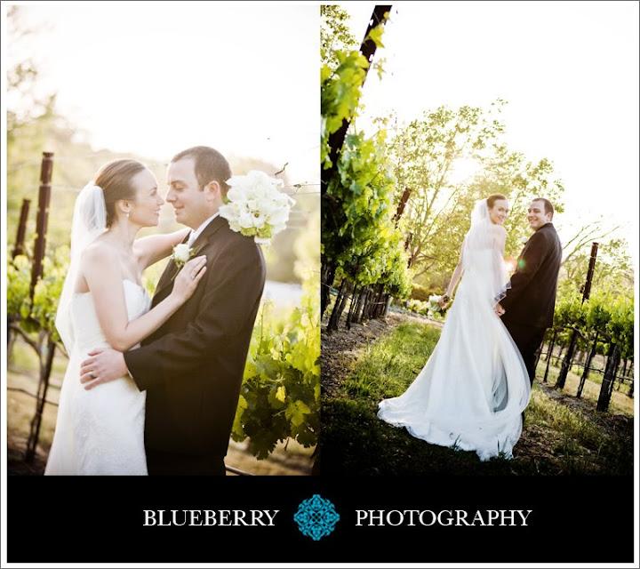 classy wente vineyards livermore wedding