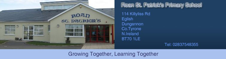 Roan St. Patrick's Primary school