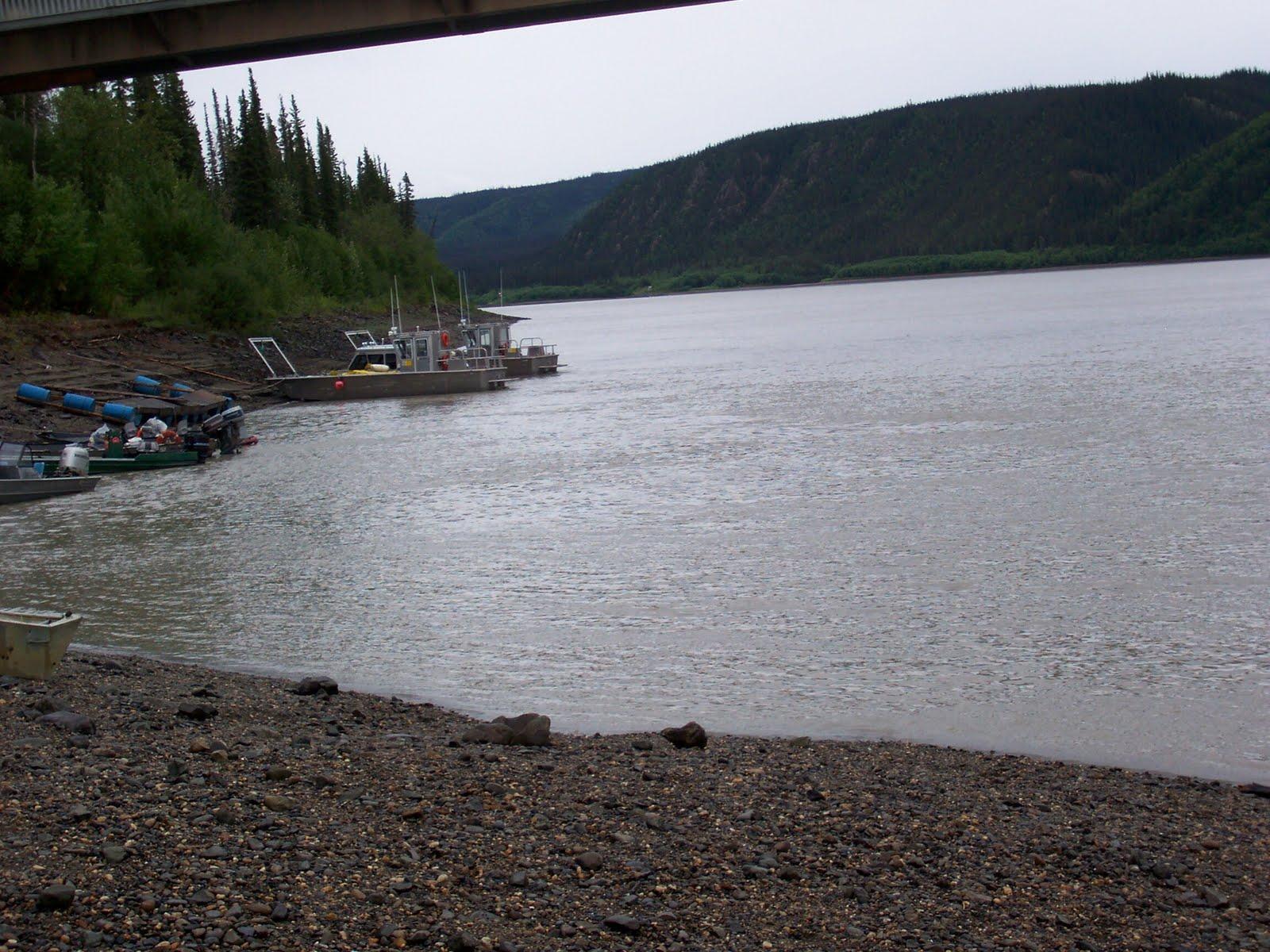 [Arctic+Circle+Tour+-+Yukon+River.jpg]