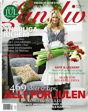 Mnadens blogg i Lantliv nr 13 2009