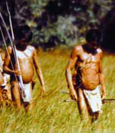 Cazadores amerindios cuibas