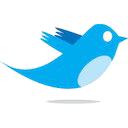 [twitter-logo.png]