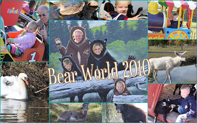 Bear World Collage