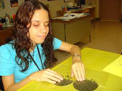 Preparando el AIA-2009