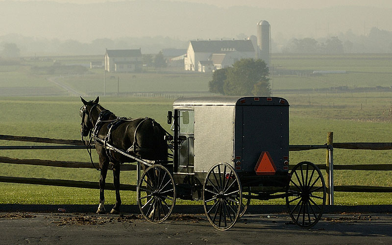 Ponderin 39 The Past With The Amish Part 1 The Origins Book Ponderings