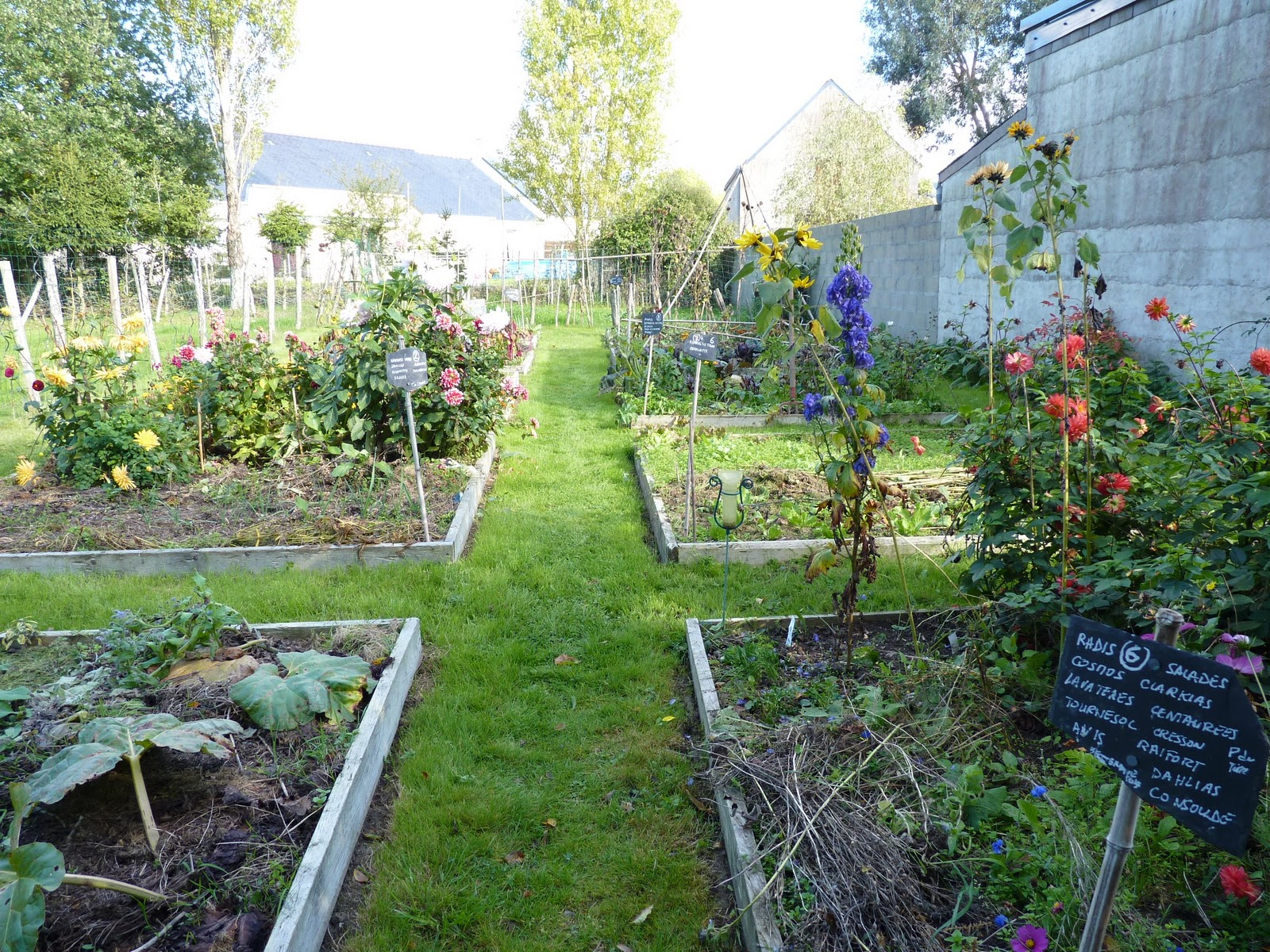 Le jardin de marguerite le potager - Mauvaise herbe jardin potager ...