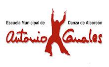 Escuela de danza: ANTONIO CANALES