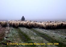 De schapendrift