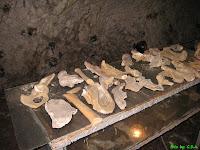 Pestera Muierii - Women's Cave