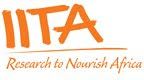 APPLY FOR IITA JOBS in aAfrica