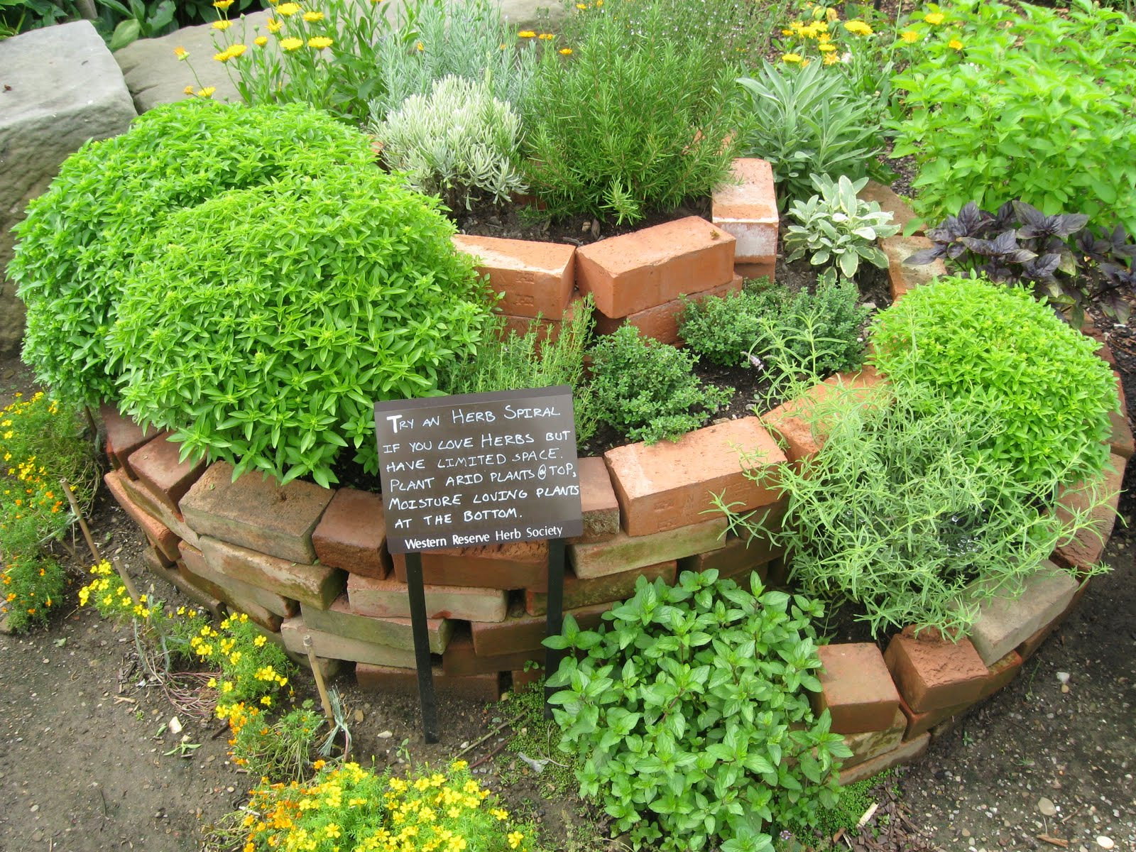 Spiral Herb Garden Design Photograph this herb garden