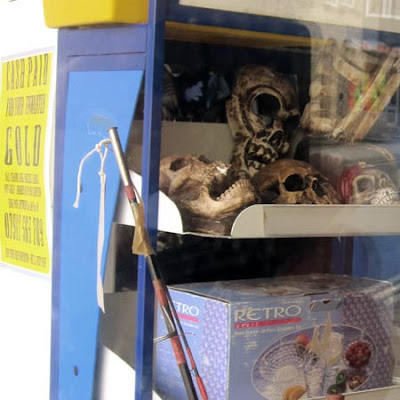Shopping in Llandrindod Wells - replica human skulls