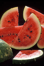 watermelon melon ethanol food fuel summer fruit