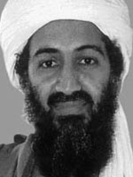 Usama Bin Laden oil