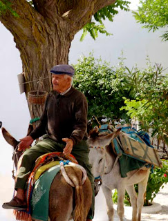 Interesting Traditions - Donkeys in Santorini