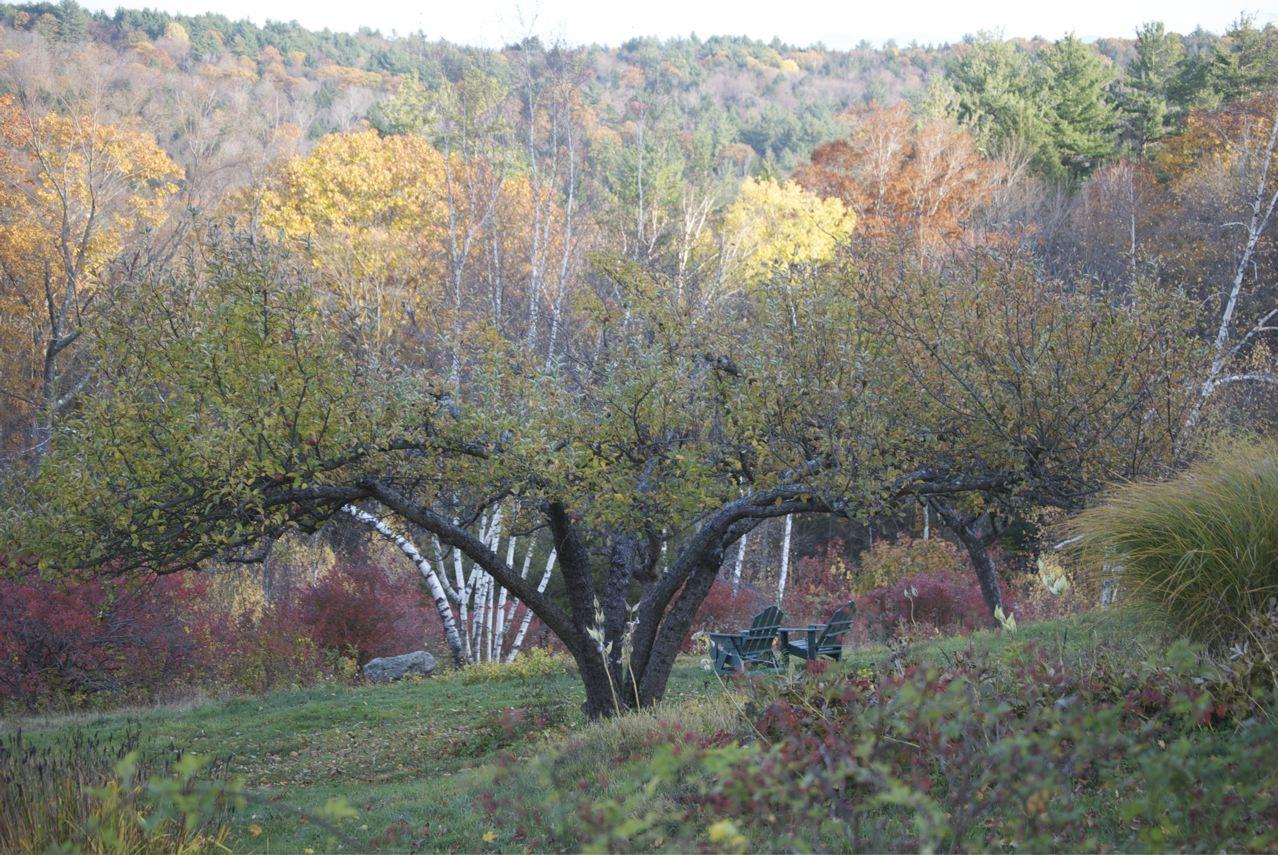 Flower hill farm autumn 39 s grand finale on flower hill and for Flower hill farms