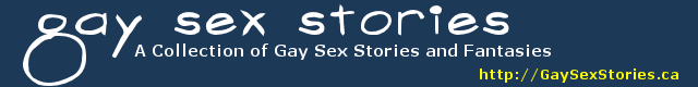 Gay Sex Stories