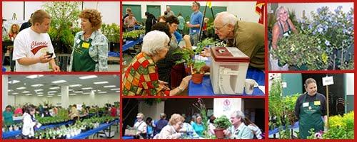 Pine Valley Community Gardens San Diego Master Gardening