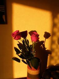 Bea's Roses
