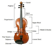 A violin typically consists of a spruce top (the soundboard, also known as .