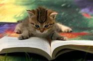 o que ando a ler agora