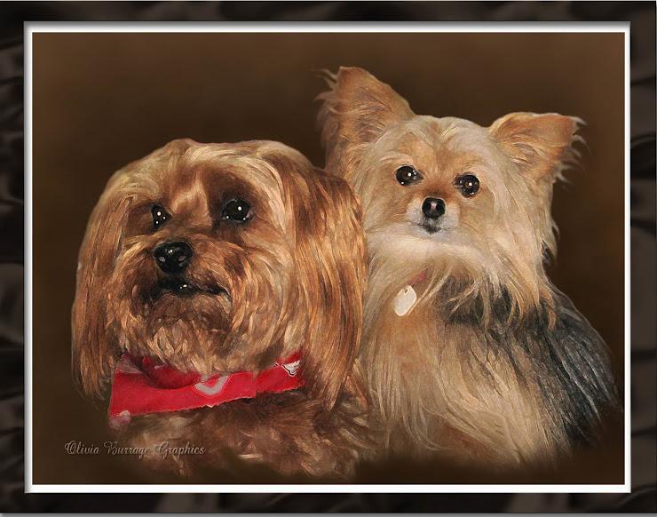 Baily & Chloe