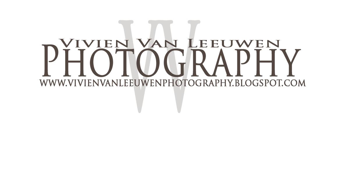 vivien van leeuwen photography