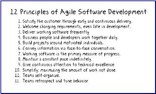 Agile in a Flash: 12 Principles for Agile Software Development