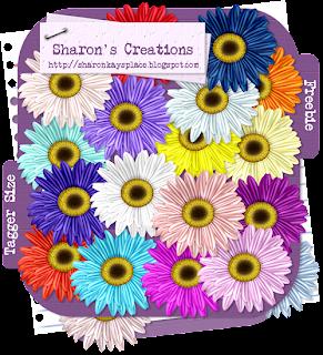 http://sharonkaysplace.blogspot.com