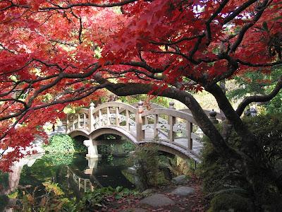 Japanese gardens or kanji