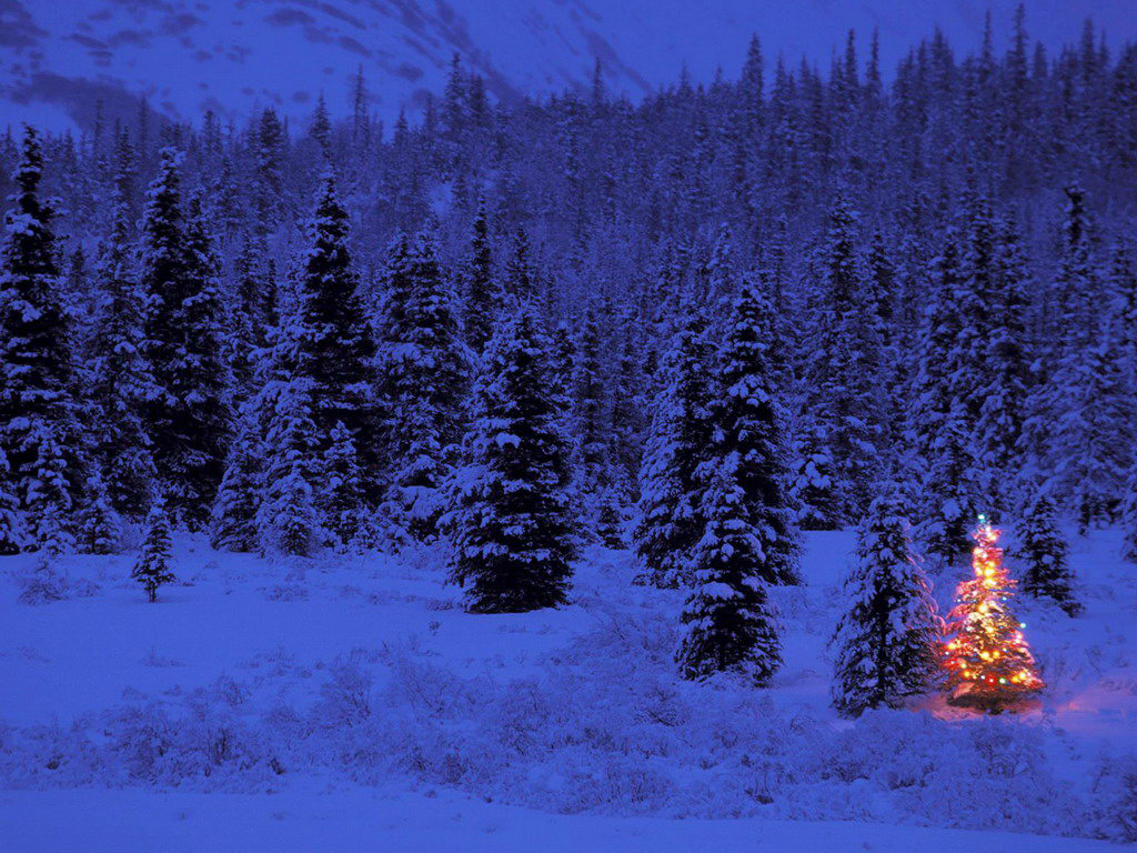 Blue Forest Christmas Tree