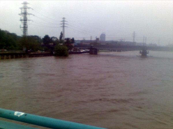 Podwyższony poziom wody - stan alarmowy na Wiśle w Krakowie