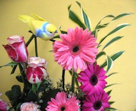 Flores....