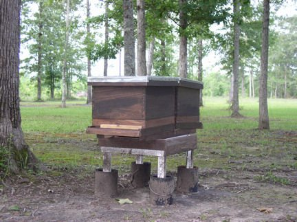 Cypress Bee Hives