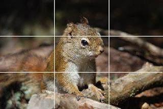 regle des tiers photographie numerique
