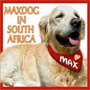 we love maxdog!