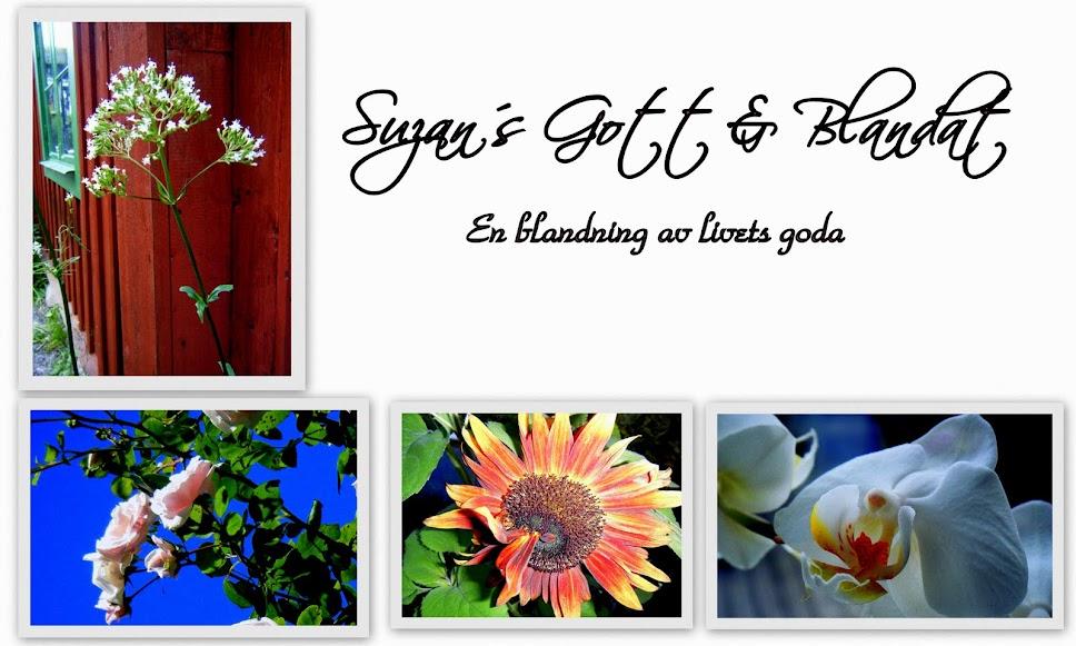 Suzan´s Gott & Blandat