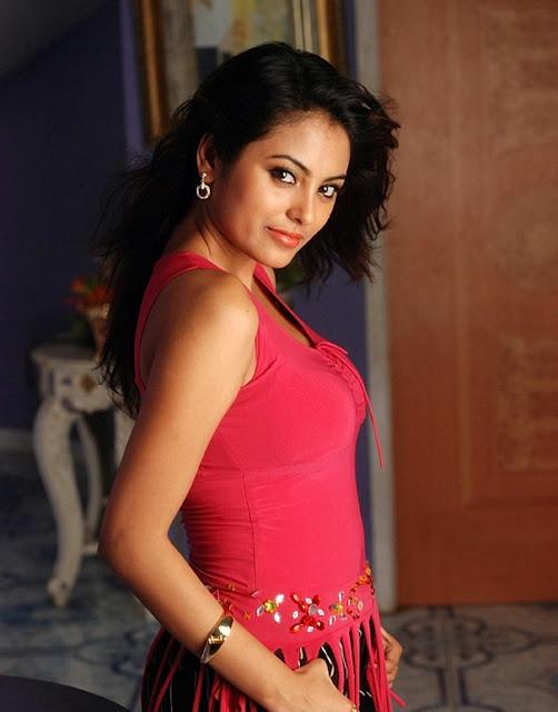 Meenakshi Sexy Stills from Telugu Movie Gang War wallpapers
