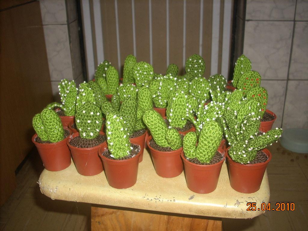 Fotos De Cactus Tejidos A Crochet En Macetas De Barro ...