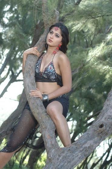 gorgeous actresses all over the world: Anushka Hot Photos