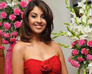 richa gangopadhyay new hot photos