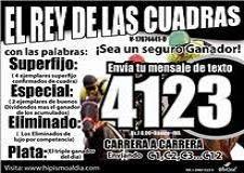 EL REY DE LAS CUADRAS