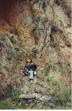 Las maravillas del Perú