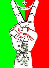 علم بلوشستان