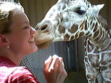 Giraffe Kisses!!