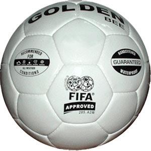 FIFA World Cup 2010 Finals Predictions